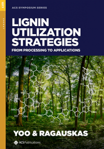 Lignin Utilization Strategies: From Processing to Applications